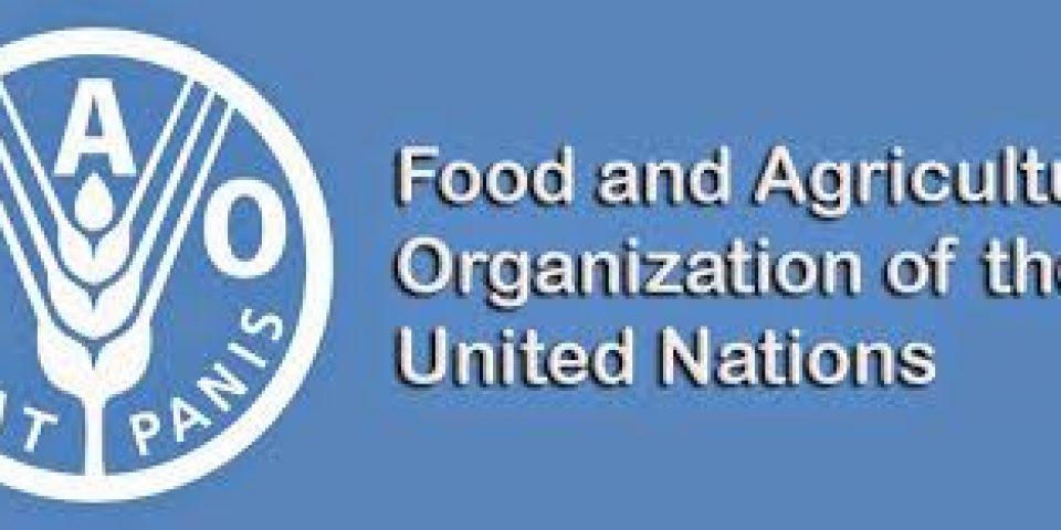 31ème session de la conférence régionale Europe/Asie de la FAO